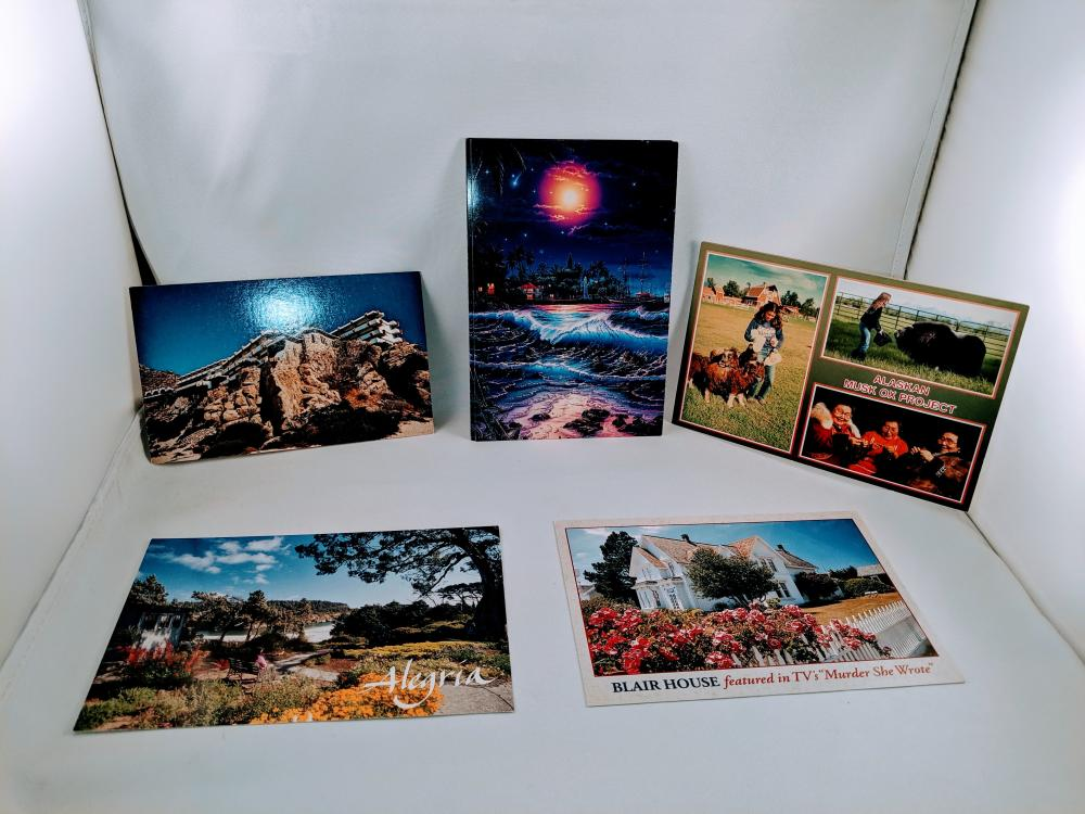 (12) Mixed Postcards Lot Cabo San Lucas, Christian Riese Lassen, Blair House, Alegria, Musk Ox