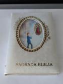 Sagrada Biblia Nuevo Testamento - Spanish New Testament Pocket size 1991